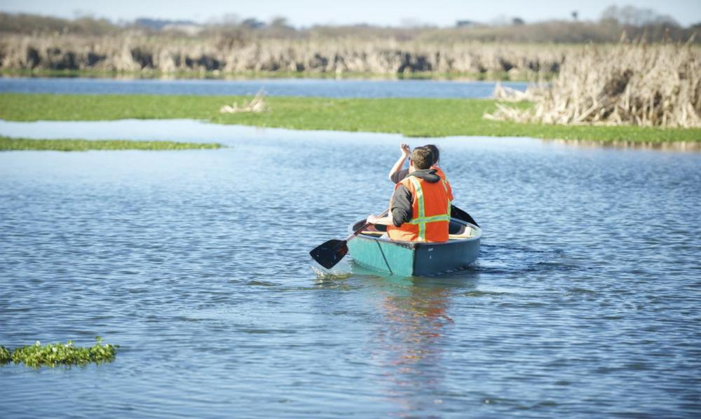 Students Canoeing in the Arcata Marsh and Wildlife Sanctuary